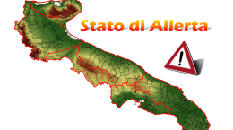 Allerta1