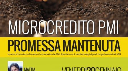 Manifesto microcredito